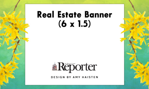 Real Estate Banner (6 x 1.5)