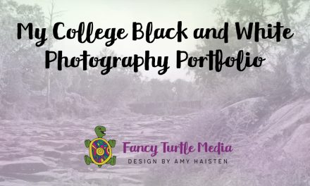 My College Black and White Photography Portfolio