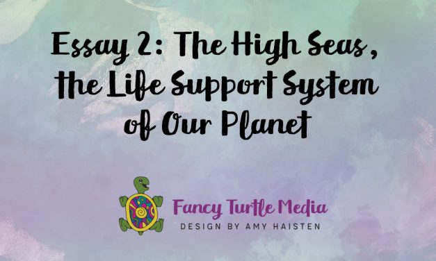 Essay 2: The High Seas, the Life Support System of Our Planet