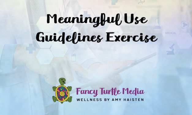 Meaningful Use Guidelines Exercise